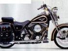 Harley-Davidson Harley Davidson FLSTS Heritage Springer 95TH Anniversary Edition